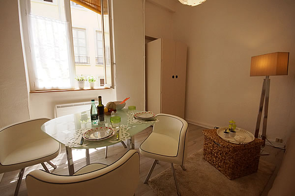 location studio meuble lyon 8